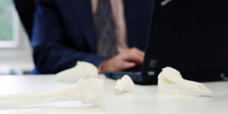 3D Printer for Medical