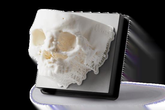 Medical Skull research 3D Print Sample